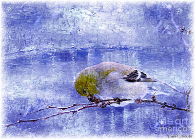 Photograph - Snow Day Goldfinch  Digital Paint 4 by Debbie Portwood