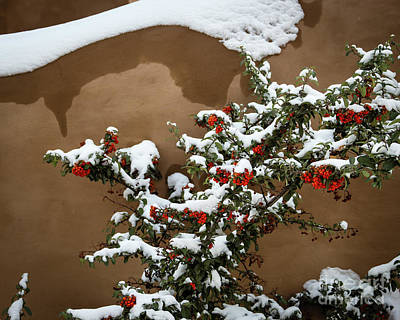 Photograph - Snow Designs by Jon Burch Photography