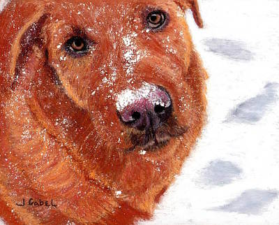 Wall Art - Pastel - Snow Dog by Laura Gabel