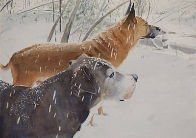 Watercolor Painting - Snow Dogs by Christopher Reid