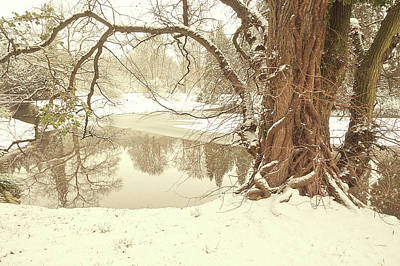 Animal Surreal - Snow Dream. Pruhonice Park. Prague by Jenny Rainbow