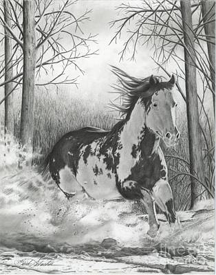 Drawing - Snow Driftin' by Barb Schacher