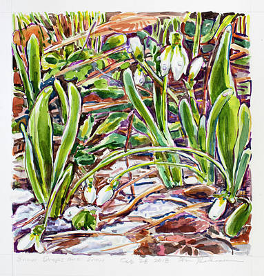Painting - Snow Drops In The Snow by Ann Heideman