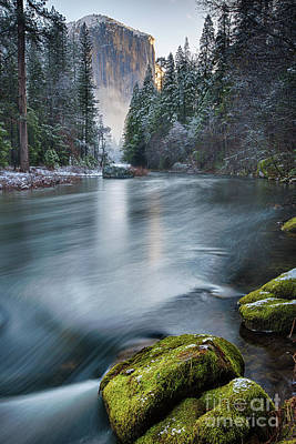 Photograph - Snow Dusted Morning 2 by Anthony Michael Bonafede