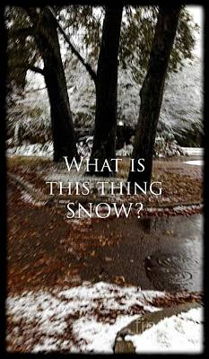 Photograph - What Is This Thing Snow by Elizabeth McTaggart