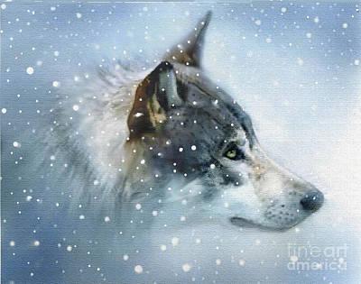 Canine Digital Art - Snow Eyes by Robert Foster