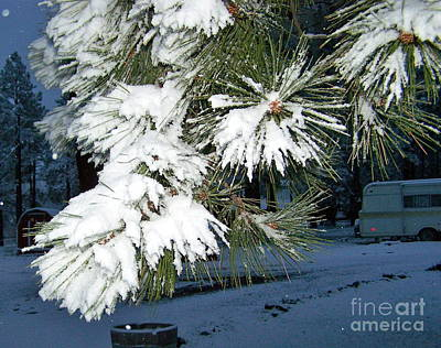 Photograph - Snow Fall In May by Pamela Walrath