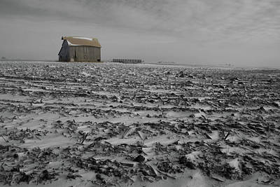 Photograph - Snow Fallow by Dylan Punke