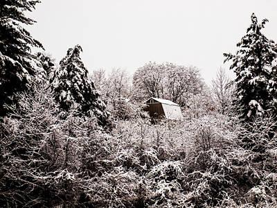Photograph - Snow Fell by Randy Sylvia