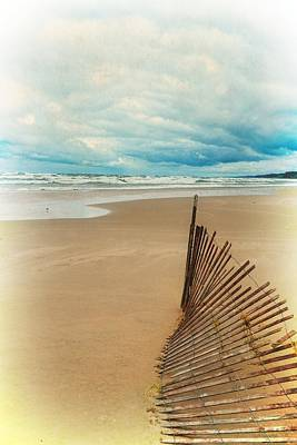 Sandblasted Photograph - Snow Fence And Seagulls by Michelle Calkins