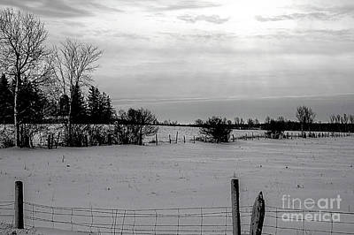 Photograph - Snow Field by Elaine Hunter