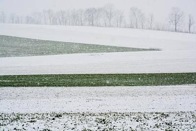 Photograph - Snow Field Geometry  by Tana Reiff