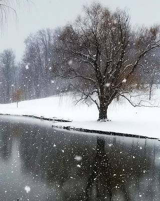 Snow Flakes On The Pond Art Print