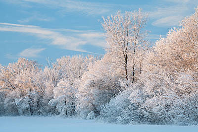 Snow Forts Photograph - Snow Flocked Forest At Sunrise by Dean Pennala