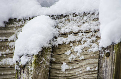 Wintry Photograph - Snow Fluff And Woodgrain by Deborah Smolinske