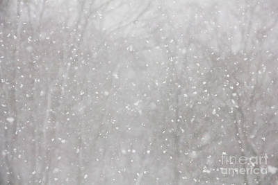 Winter Storm Photograph - Snow Flurry by Sverre Andreas Fekjan