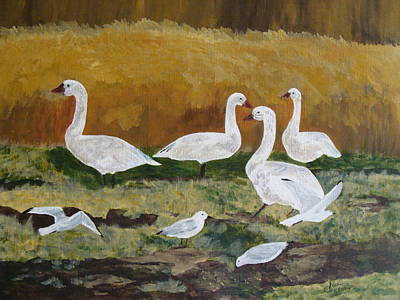 Snow Geese Painting - Snow Geese And Seagulls by Nancy Crutcher