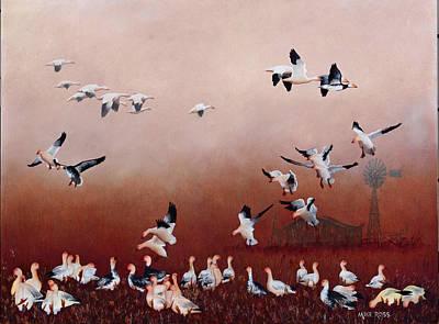 Snow Geese Original