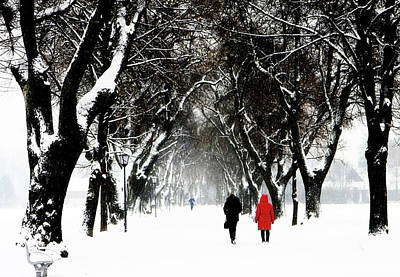 Park Scene Digital Art - Snow In Bavaria, Winter Landscape by Luisa Vallon Fumi
