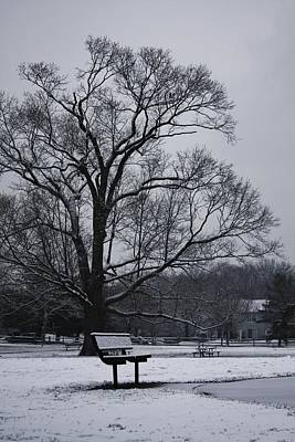 Photograph - Snow In East Brunswick by Vadim Levin