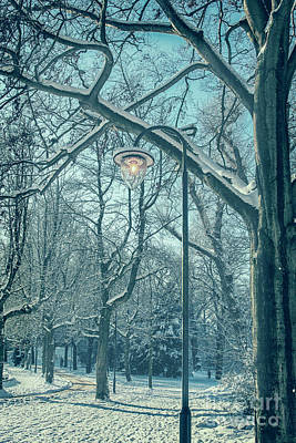 Photograph - Snow In Park by Patricia Hofmeester