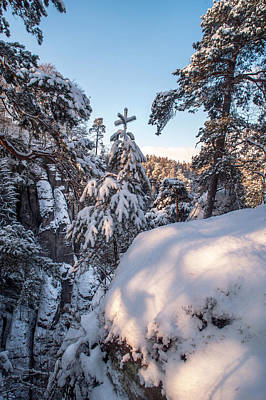 Photograph - Snow In Saxon Switzerland by Jenny Rainbow