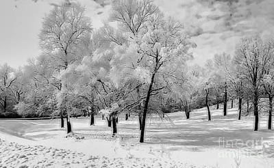 Photograph - Snow In South Park by Luther Fine Art
