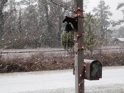 Photograph - Snow In Stockton Georgia by Belinda Lee