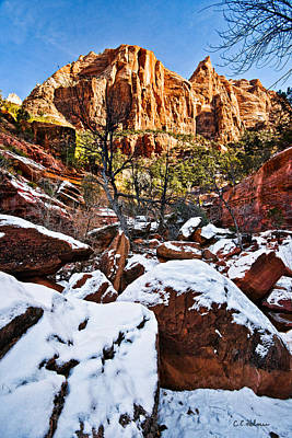 Photograph - Snow In The Canyons by Christopher Holmes
