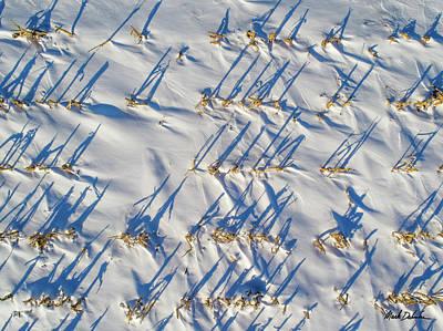 Photograph - Snow In The Corn Field by Mark Dahmke