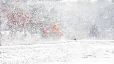 Photograph - Snow by Jianmei Fan