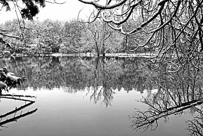 Winterscape Black And White Photograph - Snow Laden by Debbie Oppermann
