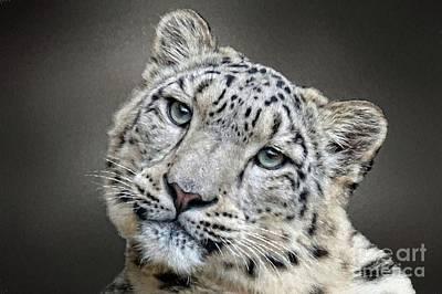 Digital Art - Snow Leopard Grays by Suzanne Handel