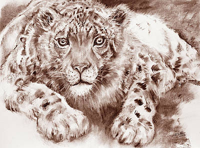 Painting - Snow Leopard In Sepia by Arti Chauhan