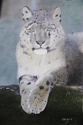 Painting - Snow Leopard by Jean Yves Crispo