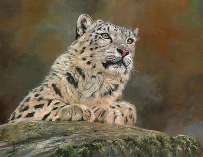 Painting - Snow Leopard On Rock by David Stribbling