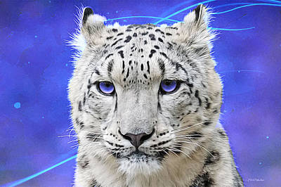 Photograph - Snow Leopard Painted by Ericamaxine Price
