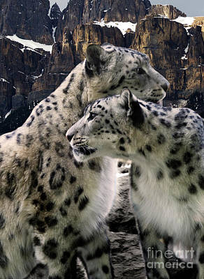 Photograph - Snow Leopard Pair  by Bob Christopher
