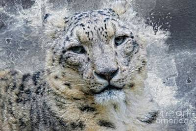 Digital Art - Snow Leopard Shades Of Grays by Suzanne Handel