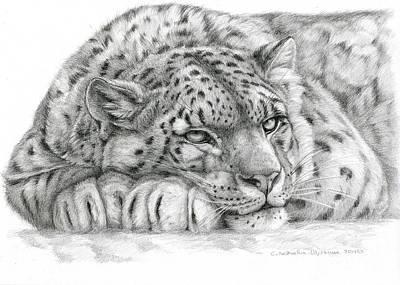 Snow Leopard Art Print by Svetlana Ledneva-Schukina