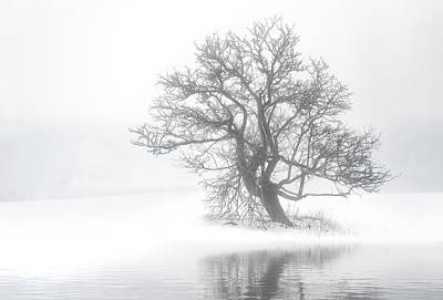 Photograph - Snow Melt Fog by Gordon Ripley