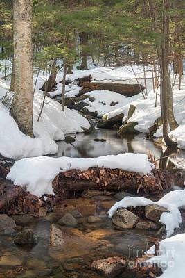 Photograph - Snow Melt by Sharon Seaward