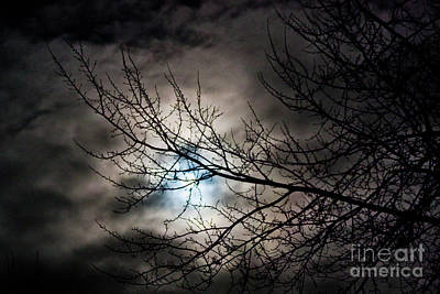 Photograph - Snow Moon 1 by Janie Johnson