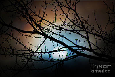 Photograph - Snow Moon 2 by Janie Johnson