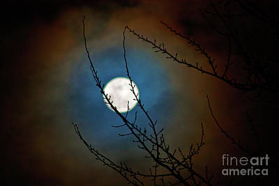 Photograph - Snow Moon 3 by Janie Johnson