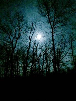 Photograph - Snow Moon by Loretta Luglio