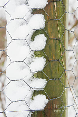Photograph - Snow Of A Fence Post by Tom Gowanlock