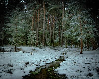 Photograph - Snow On The Gredos by Henri Irizarri