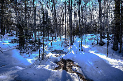 Photograph - Snow On The Hillside by David Patterson