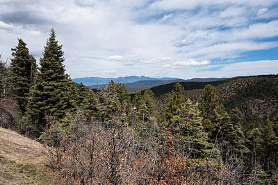 Photograph - Snow On The Jemez by Tom Cochran